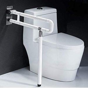 baños con rieles para el inodoro